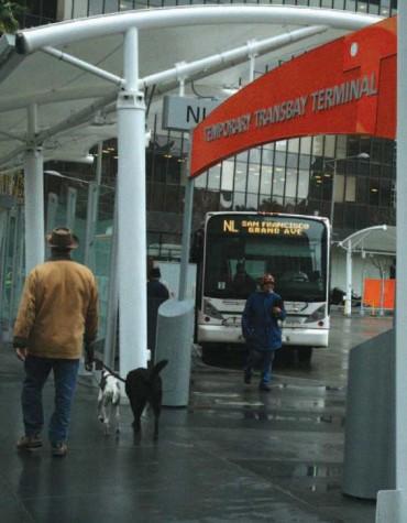 Transbay Terminal reconstruction underway