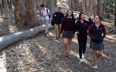 AP Art History takes a trip to the Presidio