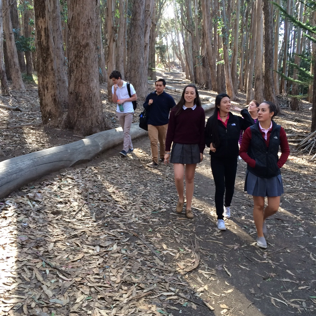 AP Art History students walk along  the Wood Line, a sculpture created by artist Andy Goldsworthy.