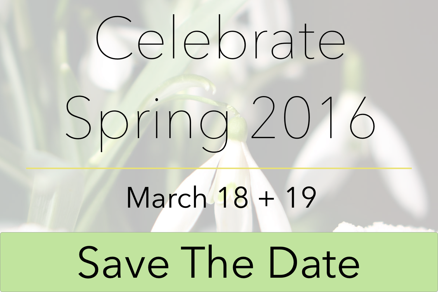 Save the Date for Celebrate Spring 2016!