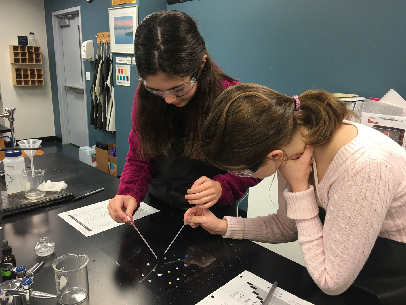 Sophomores Josie Rozzelle and Cassie Eskicioglu combine solutions to identify whether they form soluble or insoluble reactions in the Chem lab. The students learned about different types of reactions in class the day before.