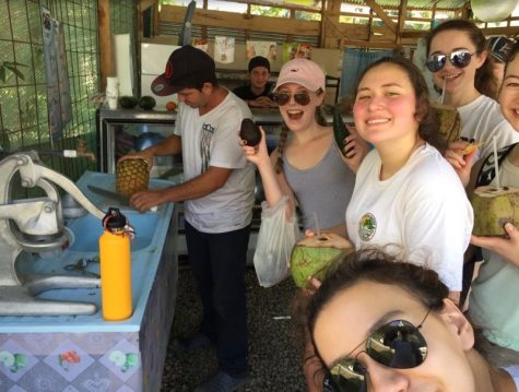 Student tourists take tropical town
