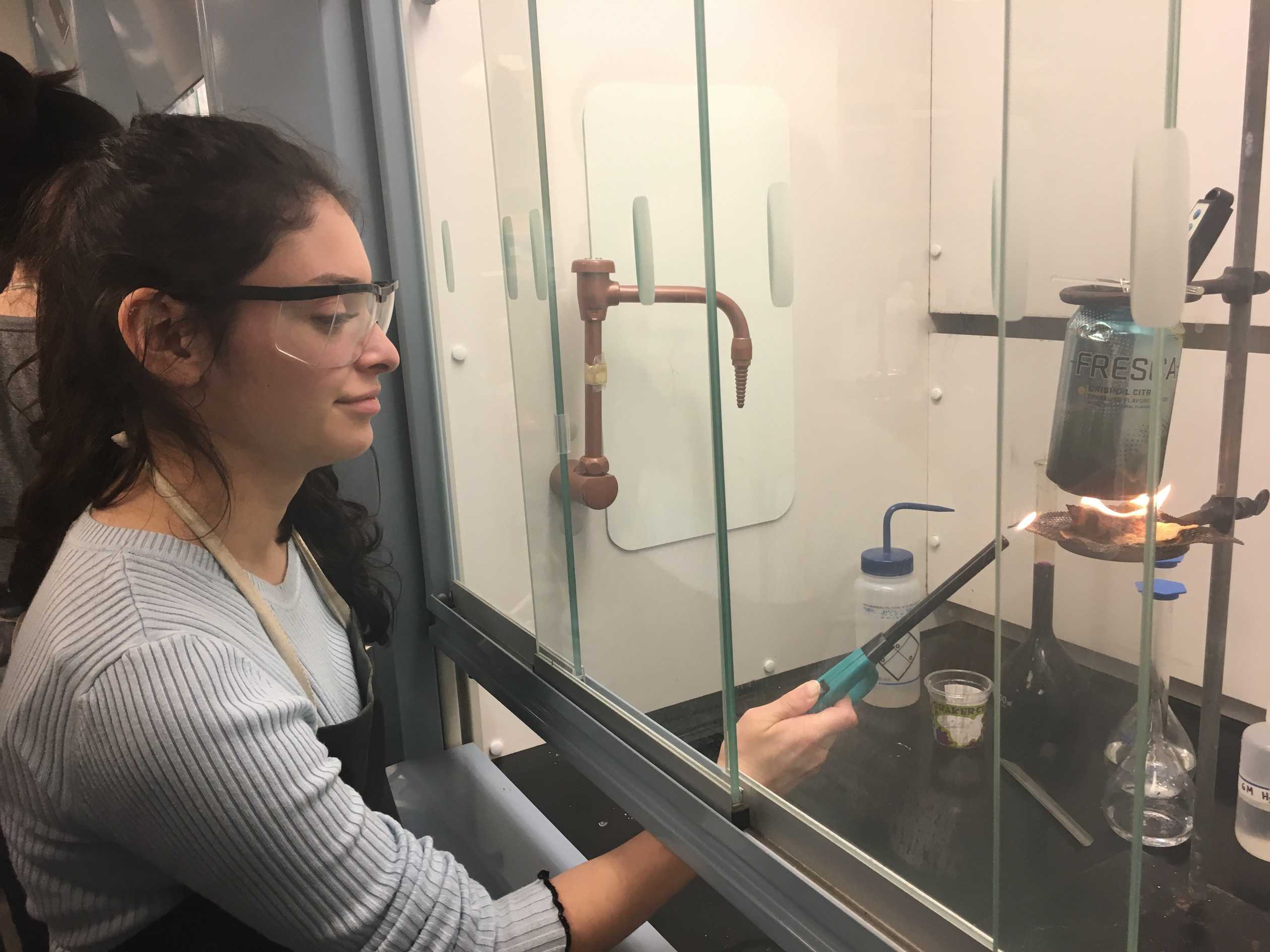 Sophomore Isabella Bermejo ignites a tortilla chip in her Chemistry class. The class performed a lab to determine how many calories are in certain foods.