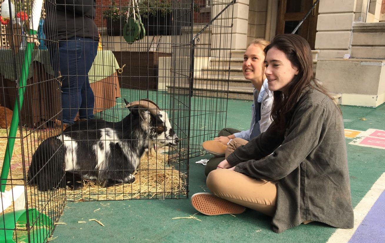 Juniors Elizabeth O'Boyle and Camilla Sigmund take a break between exams during Dec. 2017 Finals Week to sit and watch the petting zoo. Students were invited to interact with the animals as a way of relieving stress during lunch.