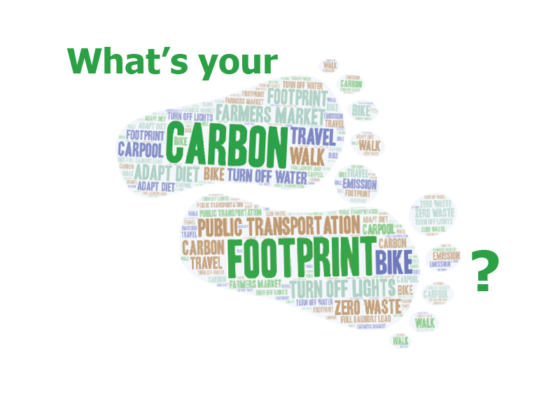 Everyone+has+a+carbon+footprint.+Calculating+your+individual+carbon+footprint+allows+you+to+take+steps+to+decrease+it.