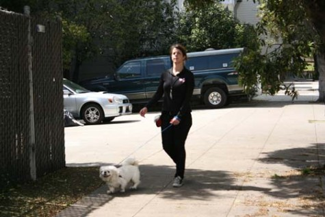 A Pets Unlimited employee walks a dog who is up for adoption. Pets Unlimited also has foster program, allowing volunteers to care for a dog in their homes.