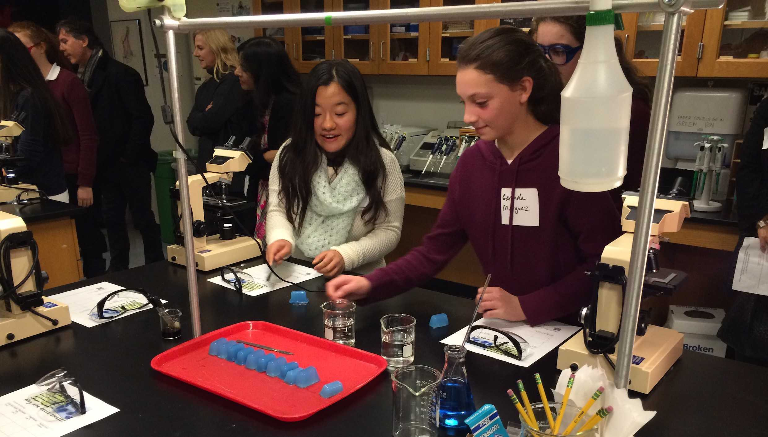 Prospective students pair up to participate in a chemistry experiment. Unlike last year where prospective students watched classes, the potential applicants were placed within the classroom instead.