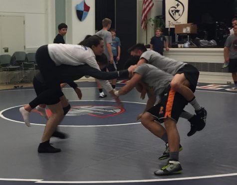 Sophomores, seniors join SHHS wrestling team