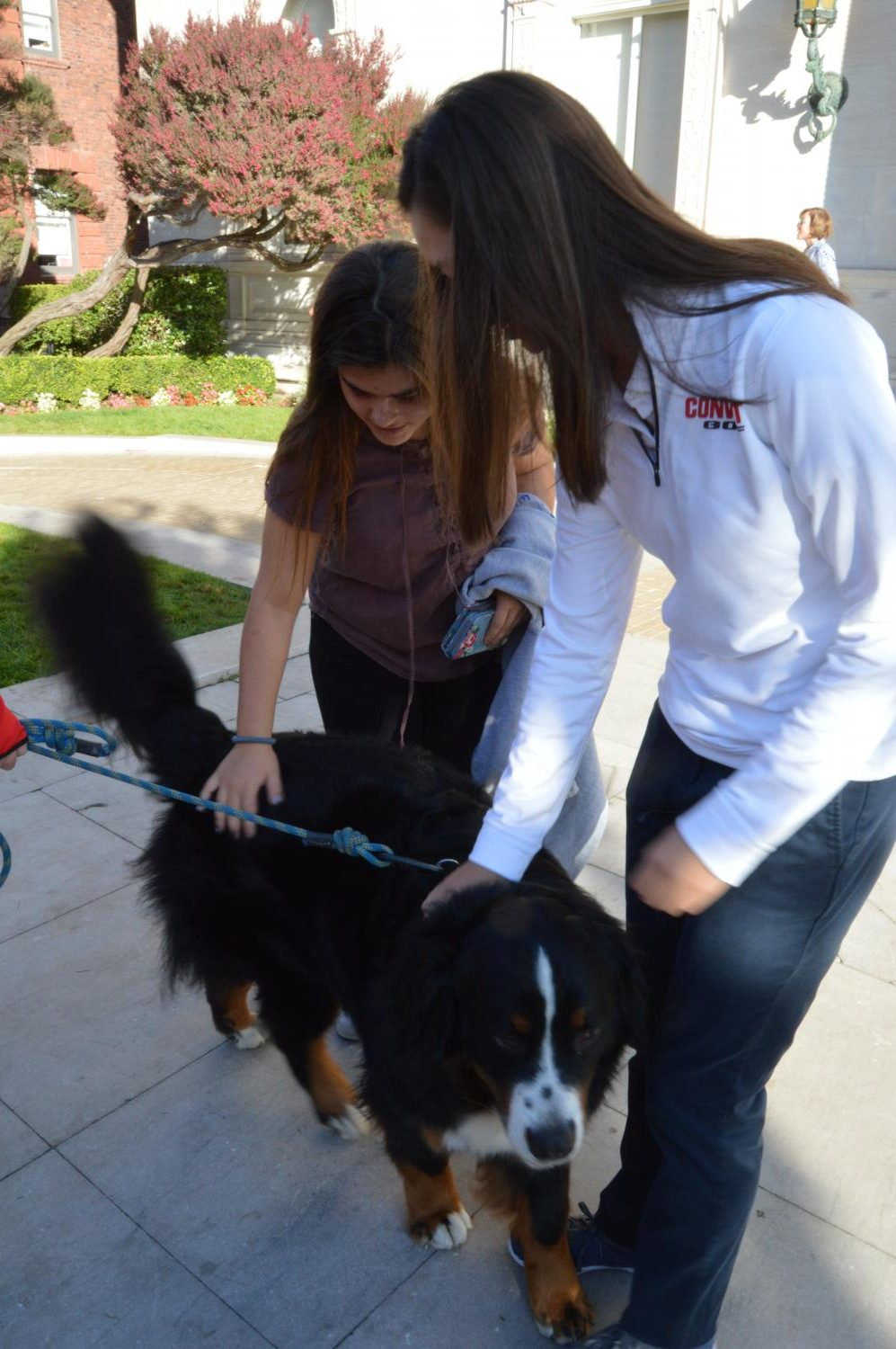 Freshmen Audrey Pinard and Sofia Jorgenson pet a dog at the Blessing of the Animals. The ceremony ended at 9 a.m. and classes resumed normally afterward.