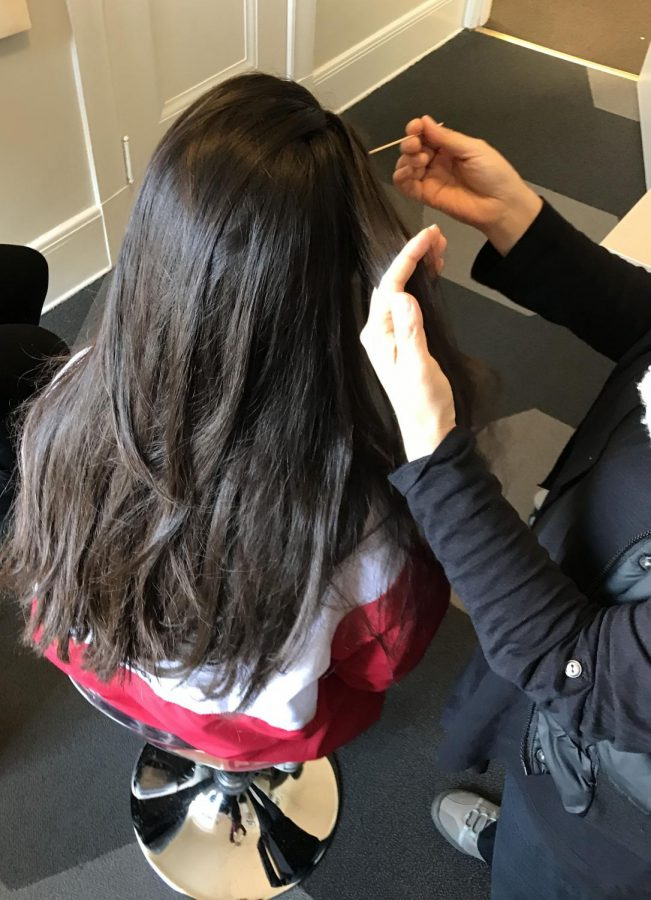 A+junior+gets+her+hair+checked+by+a+worker+for+Lice+Patrol+during+B+Period.+Due+to+an+outbreak+of+lice%2C+all+soft+furniture+on+campus+will+be+cleaned+and+Lice+Patrol+will+return+to+campus+later+this+month+to+re-check+students.