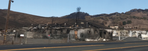 Stornetta Dairy, on the side of Highway 12, burned down during the Sonoma Fires, which destroyed an estimated 8,400 structures. the Diary produced milk for the Clover Sonoma dairy company for 100 years.