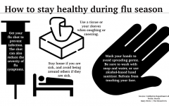 Staying healthy during the flu season