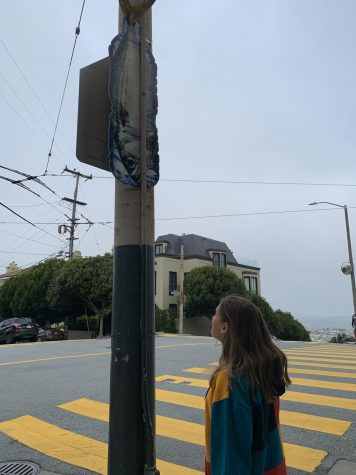 Freshman Finley Simon looks up at the biodegradable sign with a fish stuck in a bottle on Broadway and Fillmore Streets. PATHWATER campaign distributed five thousand of these signs throughout San Francisco, Venice Beach, and Santa Monica to raise awareness about the amount of plastic in the ocean.