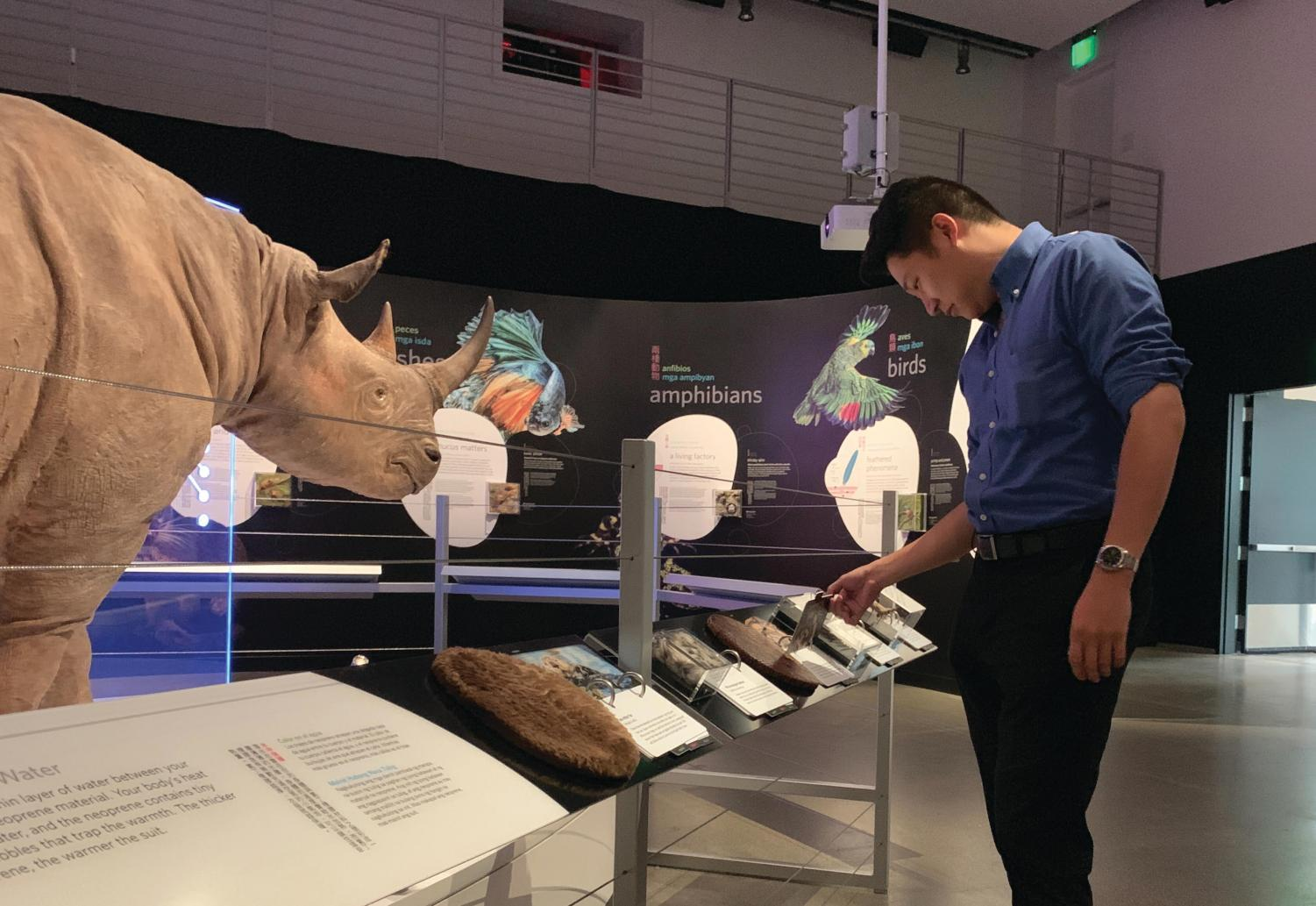 A visitor goes through one of the hands-on activities by feeling real pieces of animal skin. The exhibit provides information on the similarities between animals and their skin specifically the living organisms on the human face.