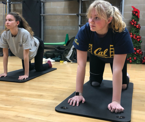 "Senior Arlena Jackson and freshman Samantha Calvin move into cow pose in the yoga sequence ""cat and cow."" Preseason swim team yoga sessions took place in the workout room located next to Herbert Center and may be added to drylands practices."