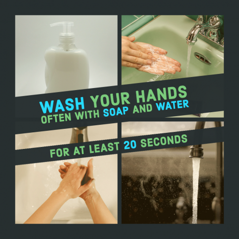 shows elements of handwashing