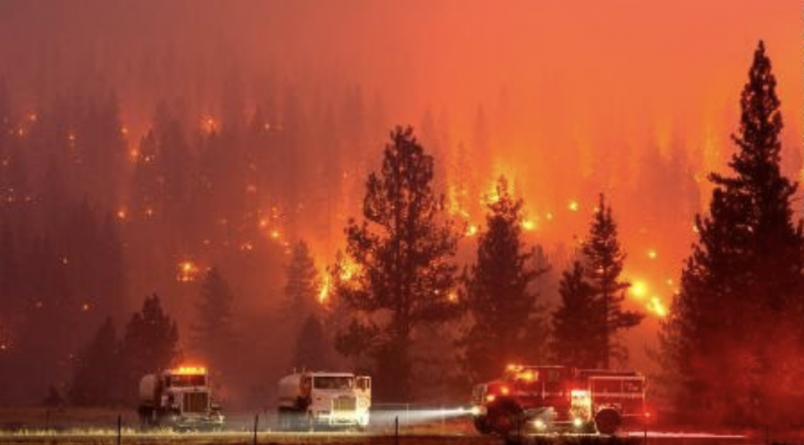 California+fires+sparked+by+lightning+strikes+have+been+burning+for+a+week.+The+smoke+has+hindered+outdoor+activity+and+social+interaction.+