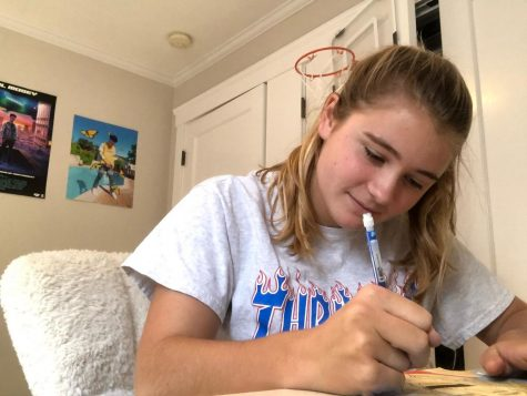 Junior Avery Stout works on homework in her newly redesigned room. Stout has recently painted her walls gray and added posters to her walls to have a change in her environment after spending all day at school in the same room for months.