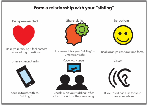 "To form a relationship with your ""sibling"", steps like sharing contact information can help you connect."